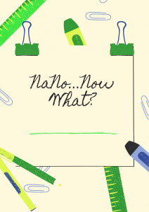 NaNo Now What? A guide to recovering after writing a novel